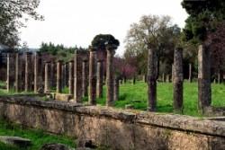 Palaesztra-a bírkózók, ökölvívók, és ugrók felkészülésének helye Olümpiában.
