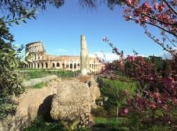 Colosseum a Fórum felől