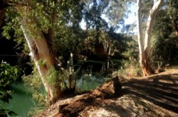 Jordán folyó, Yardenit