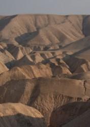 Júdeai sivatag