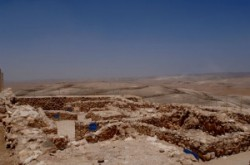Tel- Arad
