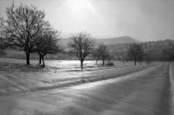 A landscape is winter beside Solymár.