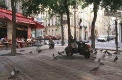 Szieszta egy párizsi parkban, galambokkal
