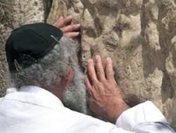 A siratófalnál, vagy ahogy a zsidók mondják a kótelnél, kipával a fején imádkozó ortodox zsidó férfi megszokott látvány. Az itt látható idős ember, szinte eggyé vált a siratófal több ezer éves kövével